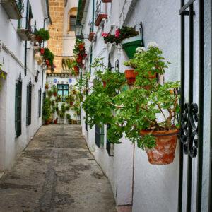 Caminos de Pasión. Barrio de la Villa, Priego de Córdoba
